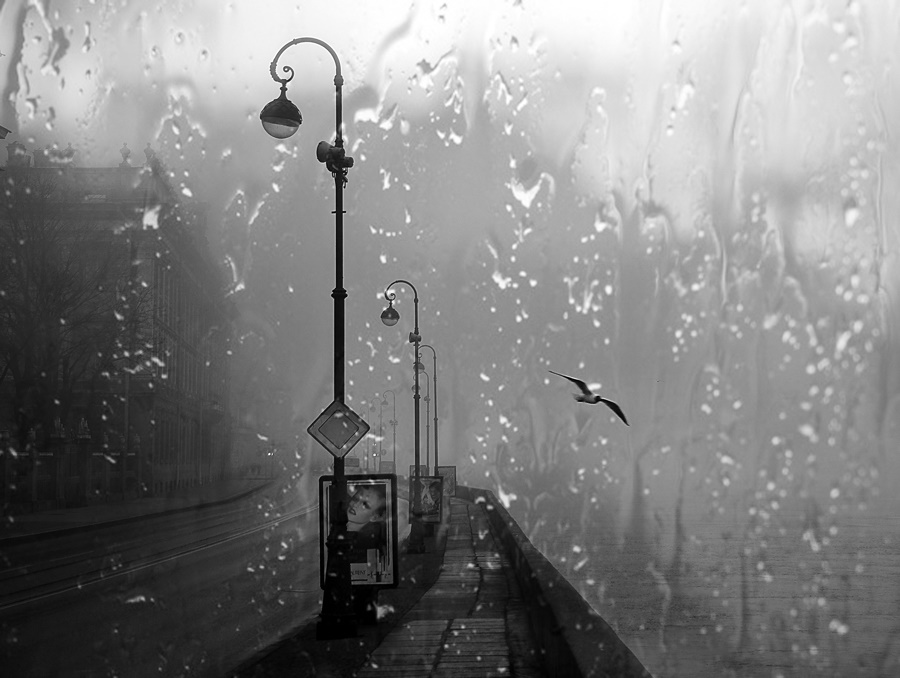 Rainy Saint-Petersburg: Photographic art by Eduard Gordeev - 3