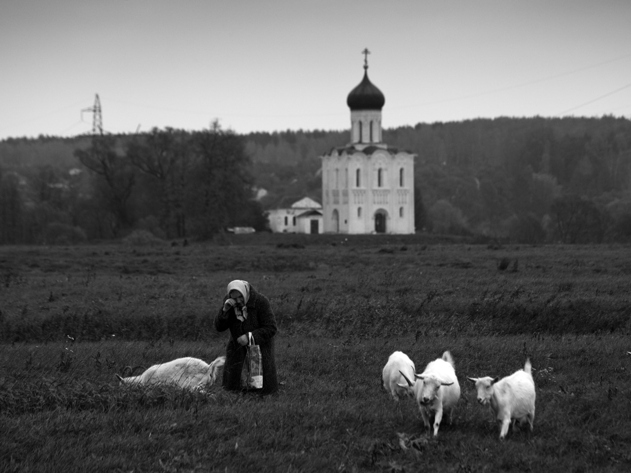 Soul of Russia: Exhibition of landscape photography in Moscow - 2