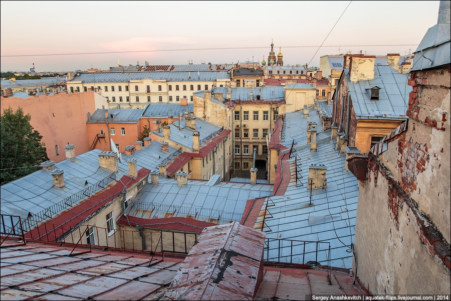 Above the city: Walking on the roofs in Saint Petersburg - 16