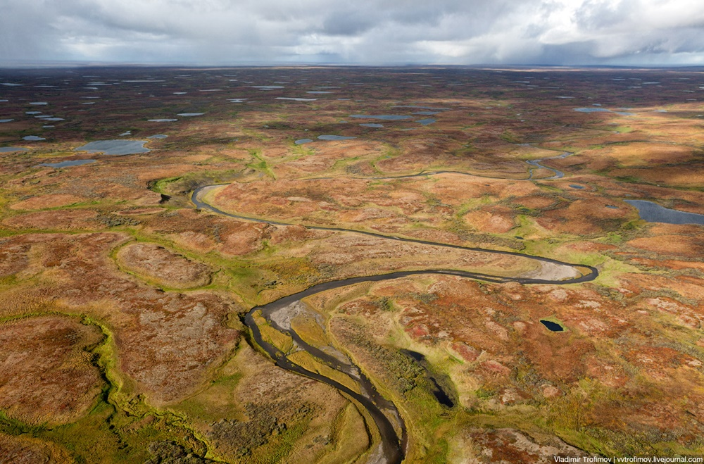Russian Tundra: Bizarre patterns of the Norths wild nature - 10
