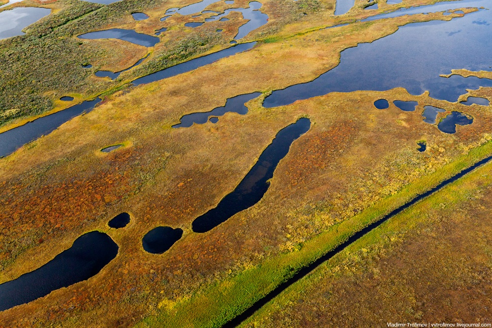 Russian Tundra: Bizarre patterns of the Norths wild nature - 3