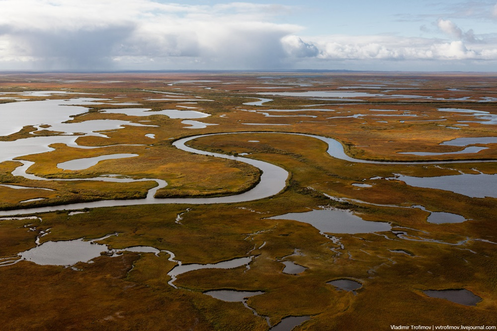Russian Tundra: Bizarre patterns of the Norths wild nature - 4