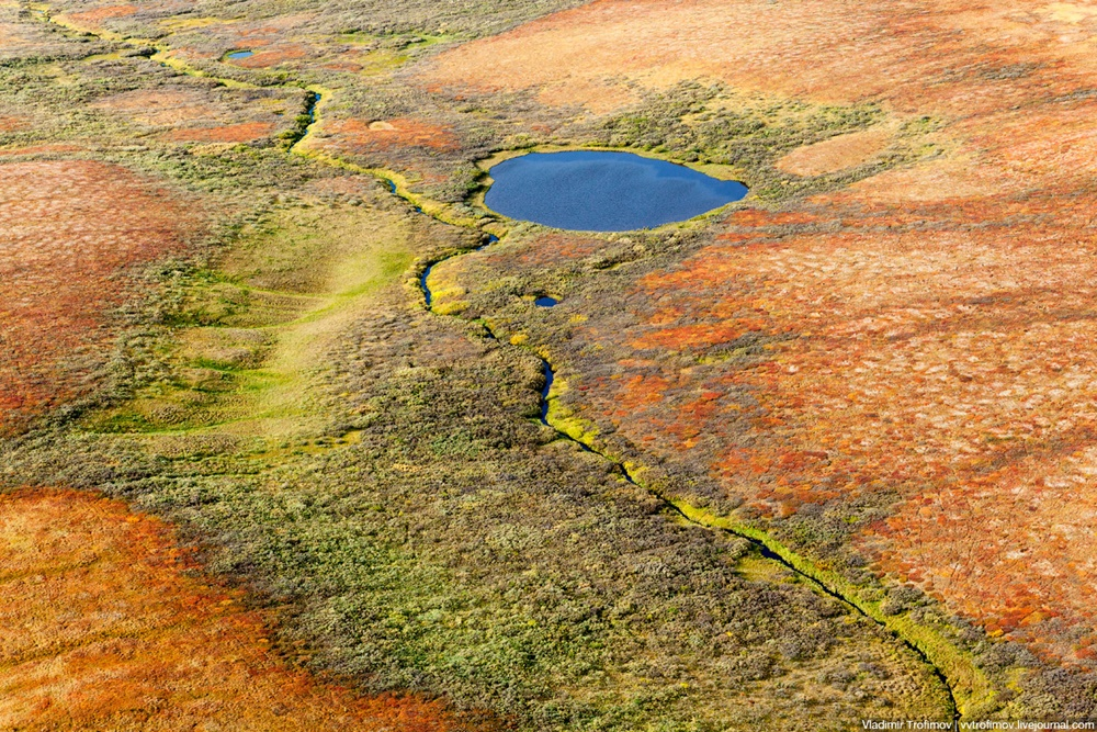 Russian Tundra: Bizarre patterns of the Norths wild nature - 8