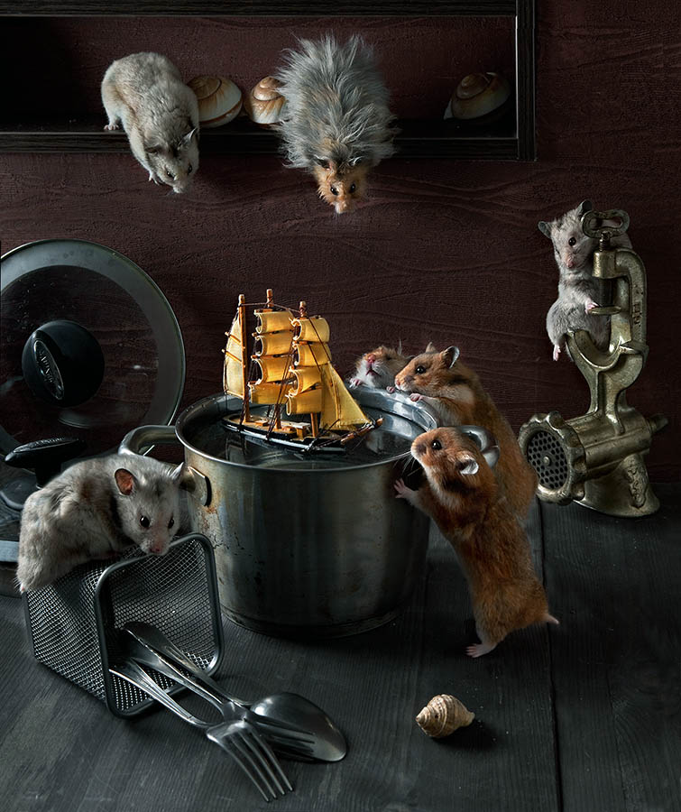 Unknown hamsters life: Humorous photos by Elena Eremina - 3