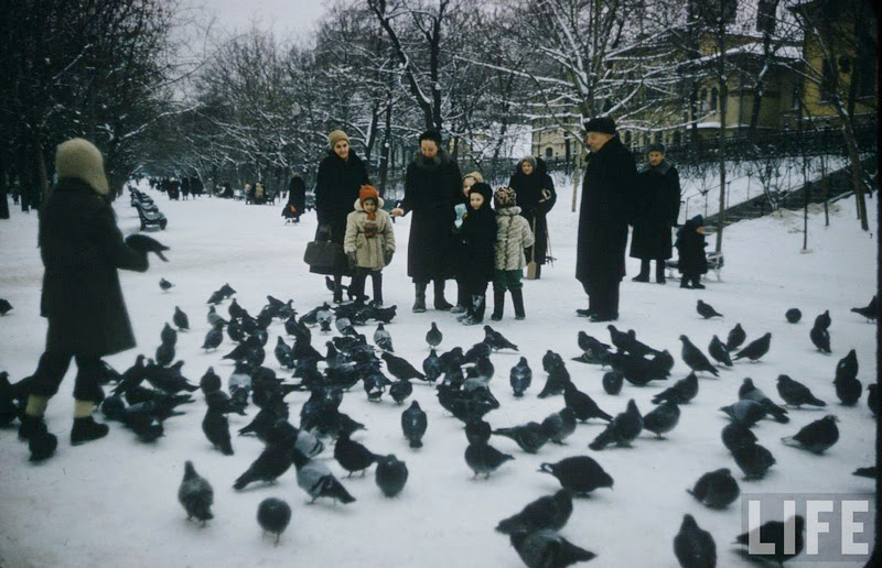 Vintage photos of the harsh winter in the era of Soviet Union - 17