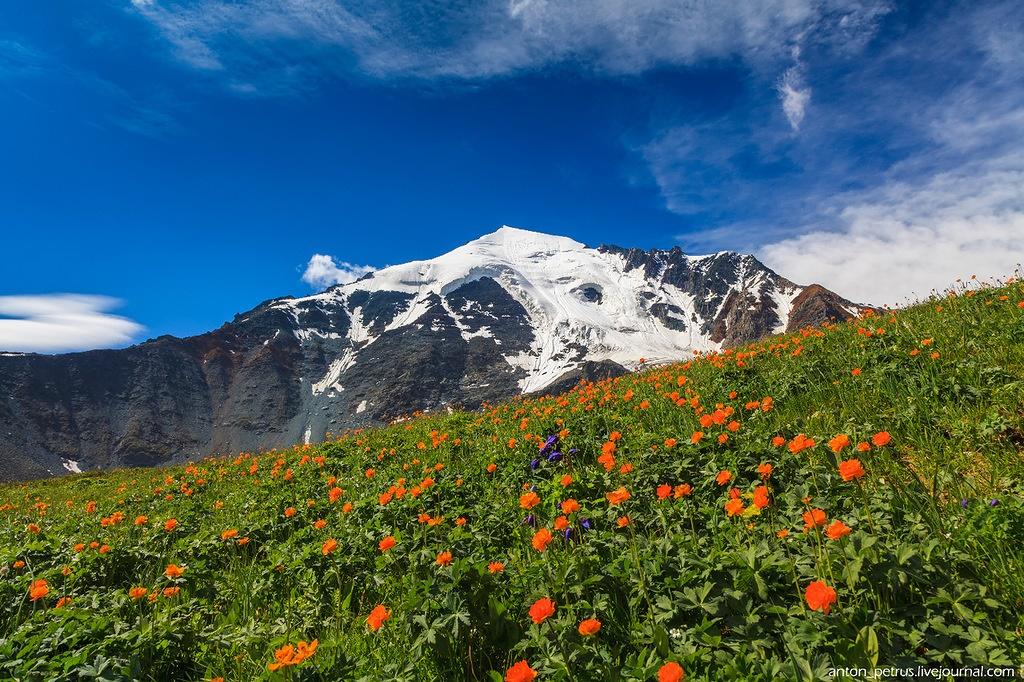 Beauteous landscapes of Altai Krai on photos by Anton Petrus - 10