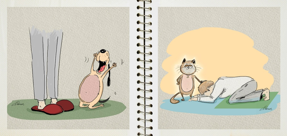 Dog vs cat: Funny pictures by Russian illustrator Bird Born - 4