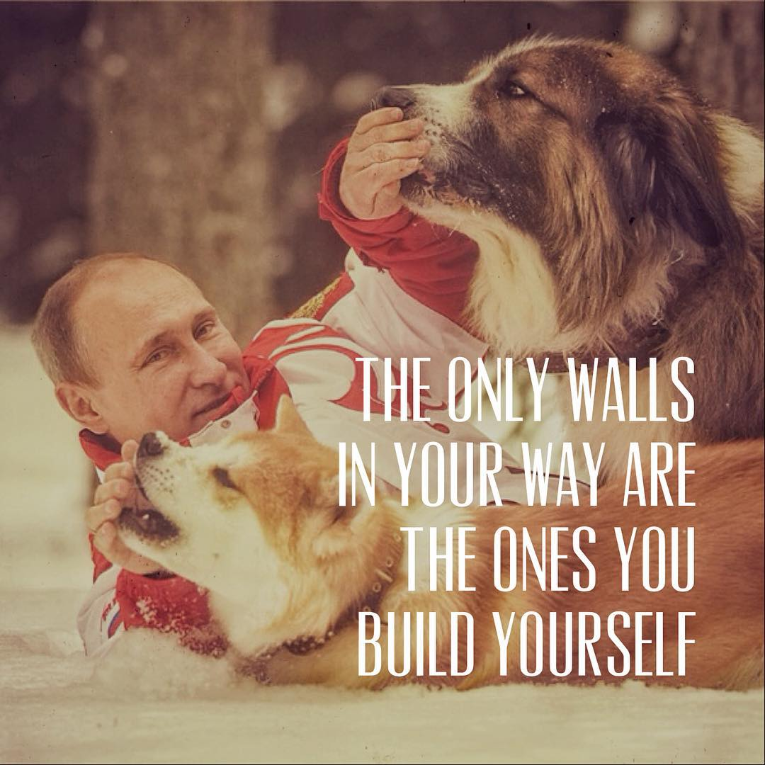 Putinspiration: sarcastic motivational pictures with Putin - 7