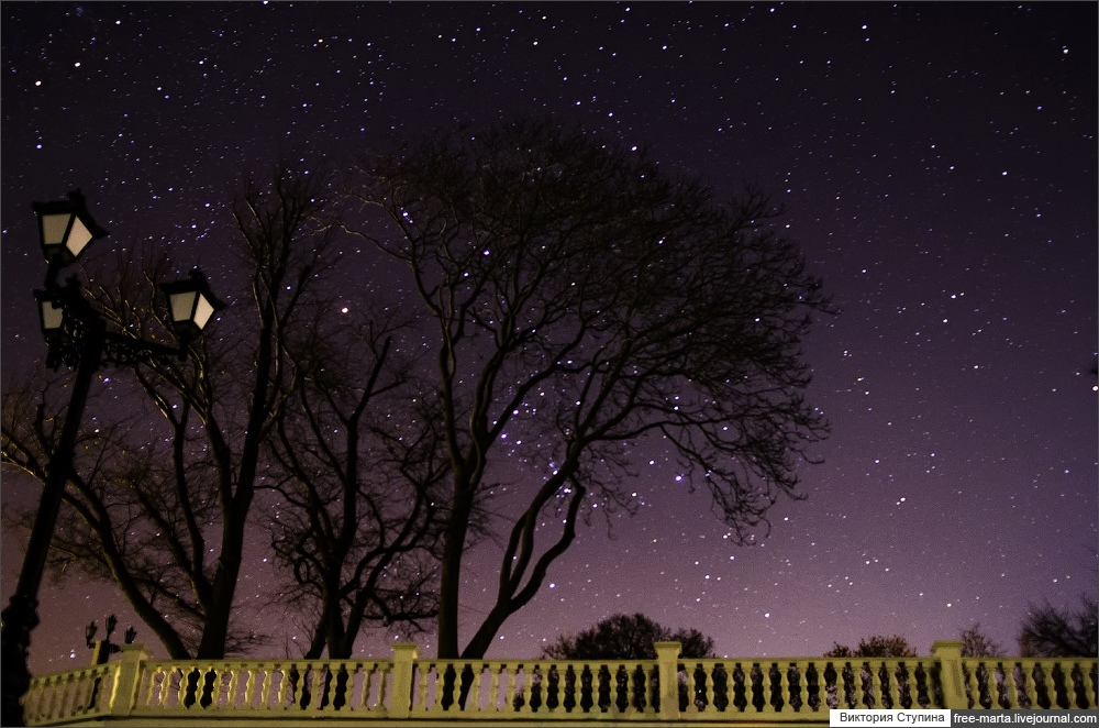 Starry sky of Sevastopol on photographs by Victoria Stupina - 20