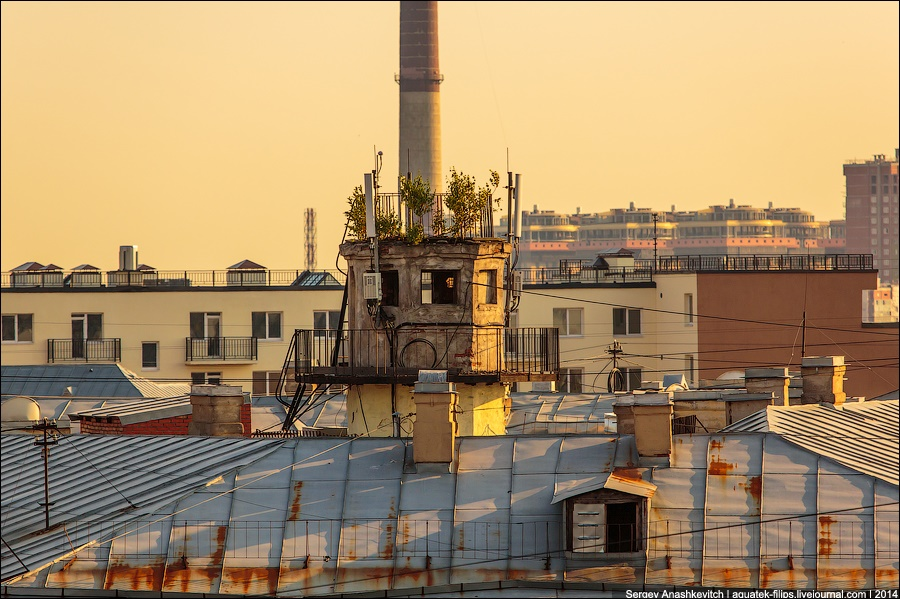 Above the city: Walking on the roofs in Saint Petersburg - 13