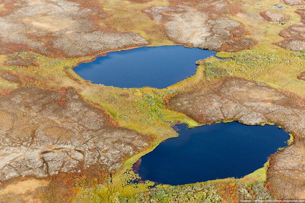 Russian Tundra: Bizarre patterns of the Norths wild nature - 1