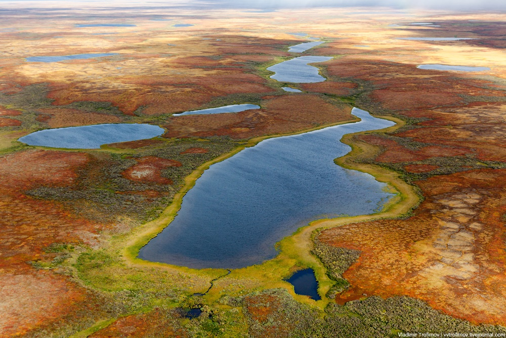 Russian Tundra: Bizarre patterns of the Norths wild nature - 11
