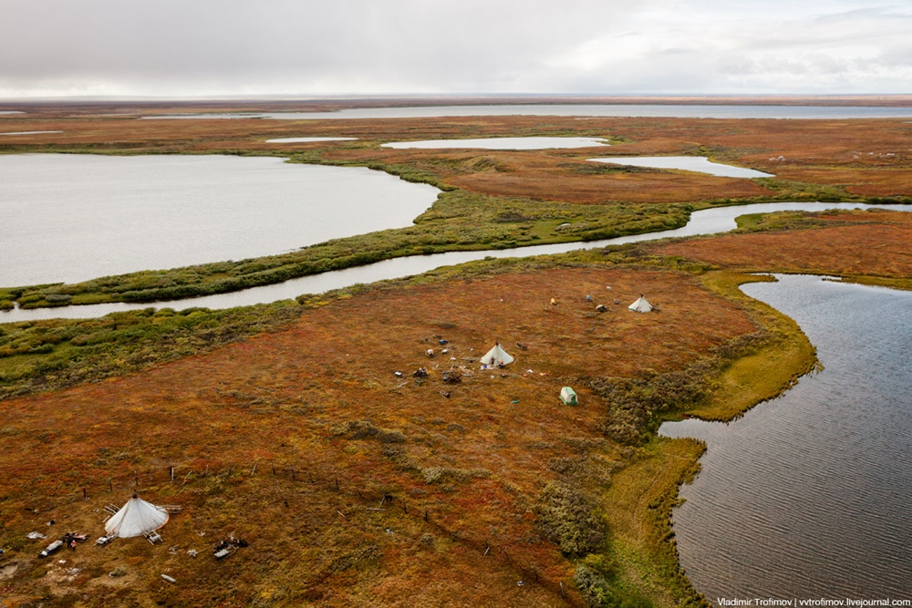 Russian Tundra: Bizarre patterns of the Norths wild nature - 14