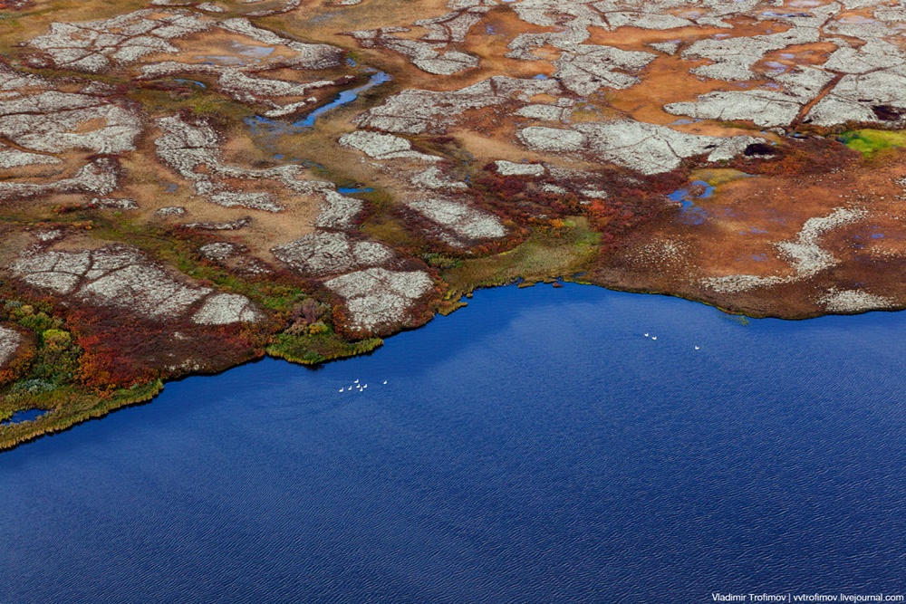 Russian Tundra: Bizarre patterns of the Norths wild nature - 2