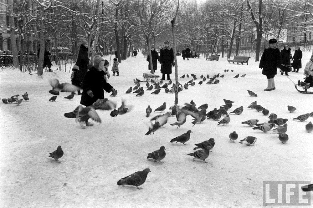 Vintage photos of the harsh winter in the era of Soviet Union - 3
