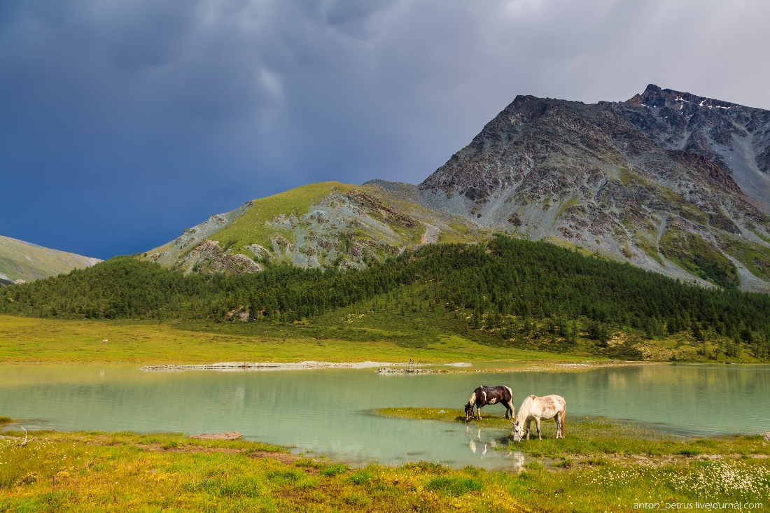 Beauteous landscapes of Altai Krai on photos by Anton Petrus - 2