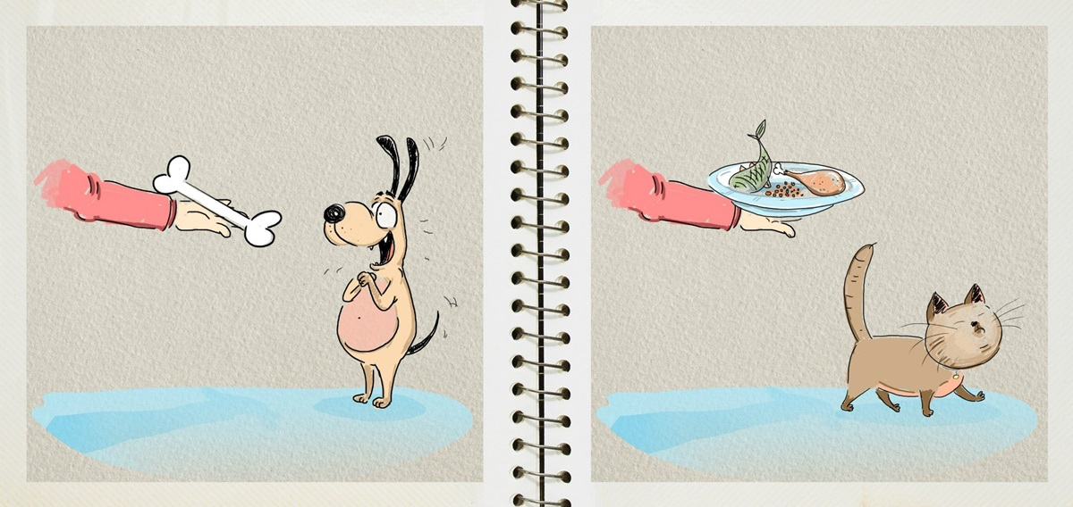 Dog vs cat: Funny pictures by Russian illustrator Bird Born - 5