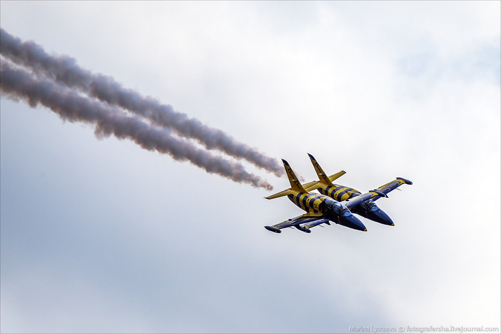 MAKS 2015: The best photos from the air show in Moscow - 28
