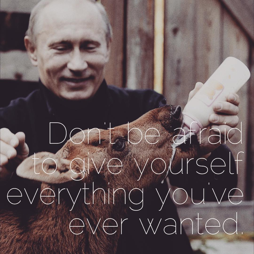 Putinspiration: sarcastic motivational pictures with Putin - 10