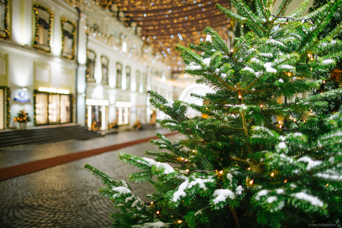 Festival of Christmas and New Year in Moscow - 23