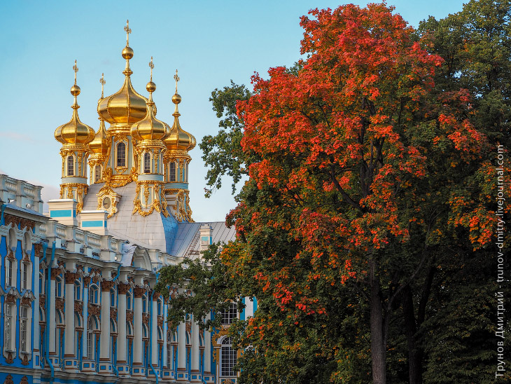 Walk around the imperial residence Pushkin in Saint Petersburg - 1
