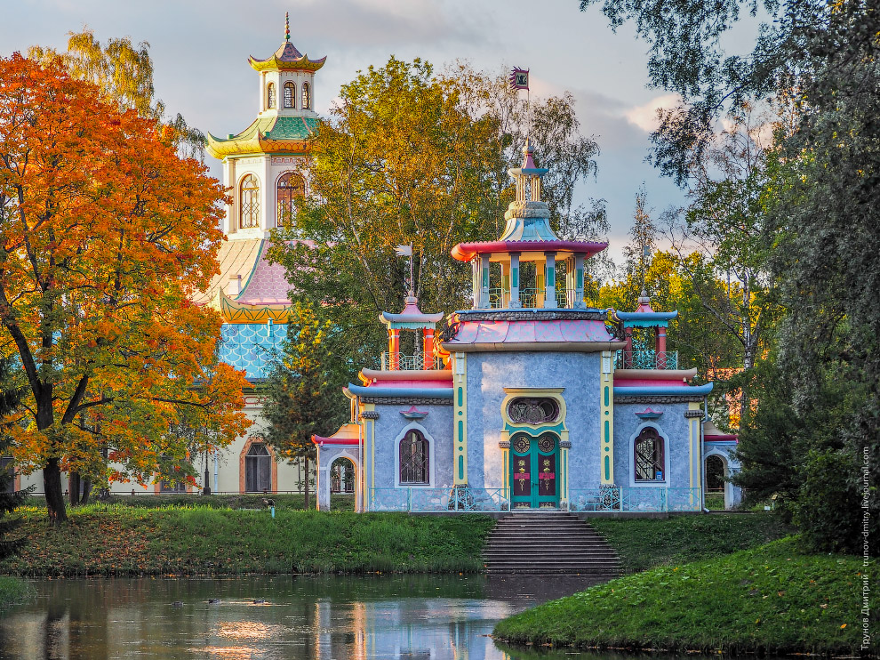 Walk around the imperial residence Pushkin in Saint Petersburg - 10