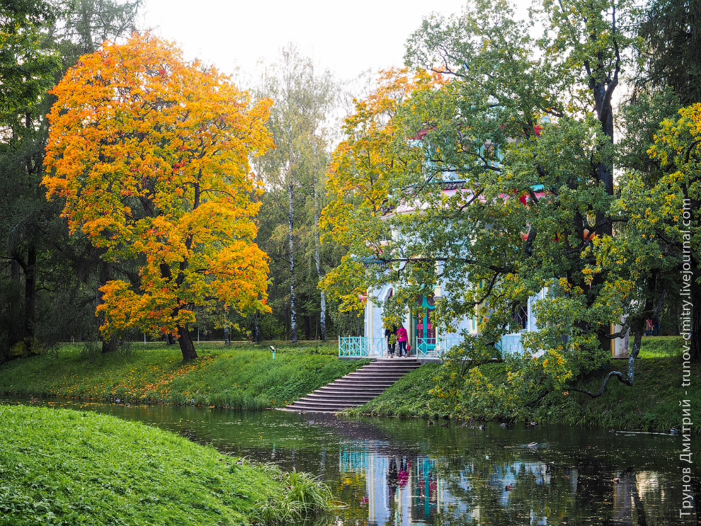 Walk around the imperial residence Pushkin in Saint Petersburg - 12