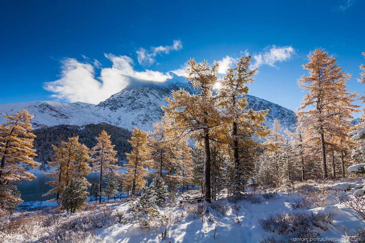 Severe but wonderful Altai winter in photos by Anton Petrus - 2