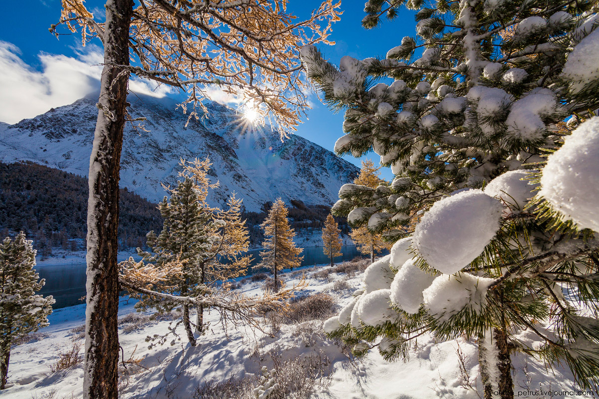 Severe but wonderful Altai winter in photos by Anton Petrus - 3