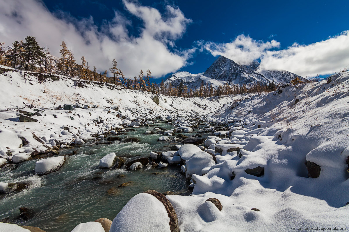 Severe but wonderful Altai winter in photos by Anton Petrus - 5