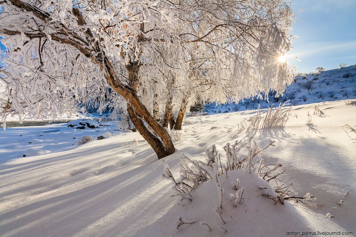 Severe but wonderful Altai winter in photos by Anton Petrus - 6